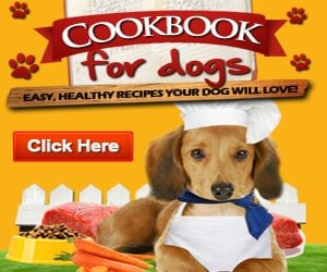 Dog Food Cookbook