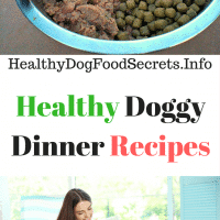 Healthy Doggy Dinner Recipes