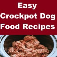 Easy Crockpot Dog Food Recipes