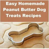 Easy homemade peanut butter dog treats recipes