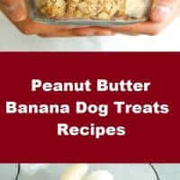 Peanut Butter Banana Dog Treats Recipes