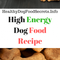 High Energy Dog Food Recipe