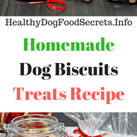 Dog Biscuits Treats Recipe