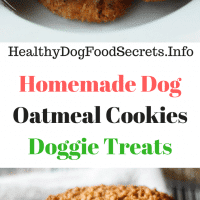 Homemade Dog Oatmeal Cookies Doggie Treats