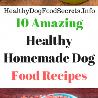 Amazing Healthy Homemade Dog Food Recipes, Simple Healthy Homemade Dog Food Recipes