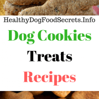 Dog Cookies Treats Recipes