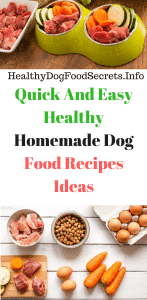 Quick and easy healthy homemade dog food recipes ideas healthy dog quick and easy healthy homemade dog food recipes ideas healthy dog food plans forumfinder Images