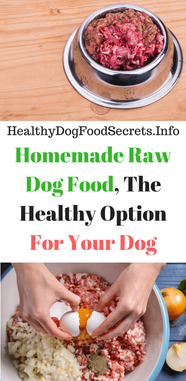 Homemade raw dog food the healthy option for your dog healthy dog homemade raw dog food the healthy option for your dog healthy dog food plans forumfinder Gallery