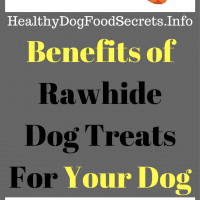rawhide dog treats