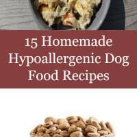 15 Homemade Hypoallergenic Dog Food Recipes