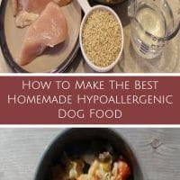 homemade hypoallergenic dog food
