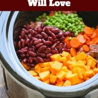 4 Crockpot Dog Food Recipes Your Puppy Will Love