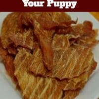 Homemade Chicken Jerky Recipes For Your Puppy