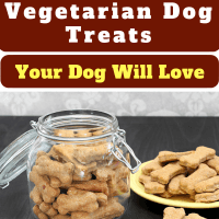 10 Healthy Homemade Vegetarian Dog Treats Your Dog Will Love