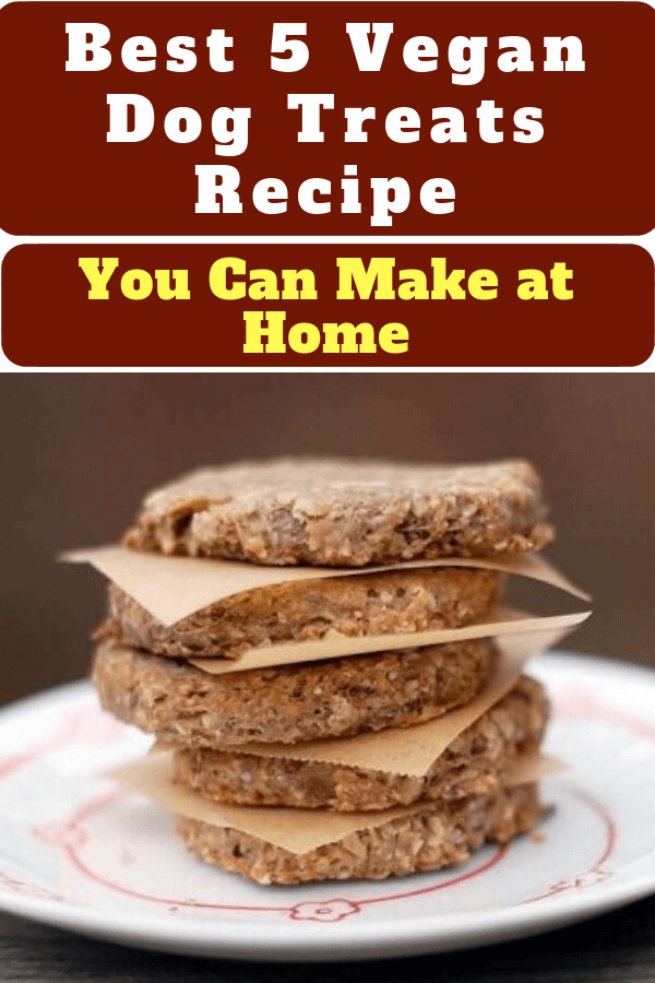 Best 5 Vegan Dog Treats Recipe You Can Make at Home