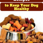 healthy homemade organic dog treat recipes
