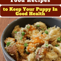 Healthy Vegetarian Dog Food Recipes